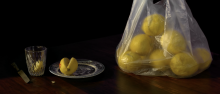 Miška Mandić, Preliminary rendering of Lemons, Camera 2, 2020, HD video, 28 min, colour, silent (detail)